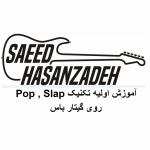 سعید حسن زاده saeed hasanzadeh