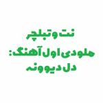 سعید حسن زاده - هایده